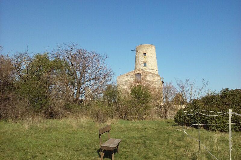 Turm von Markgrafneusiedl